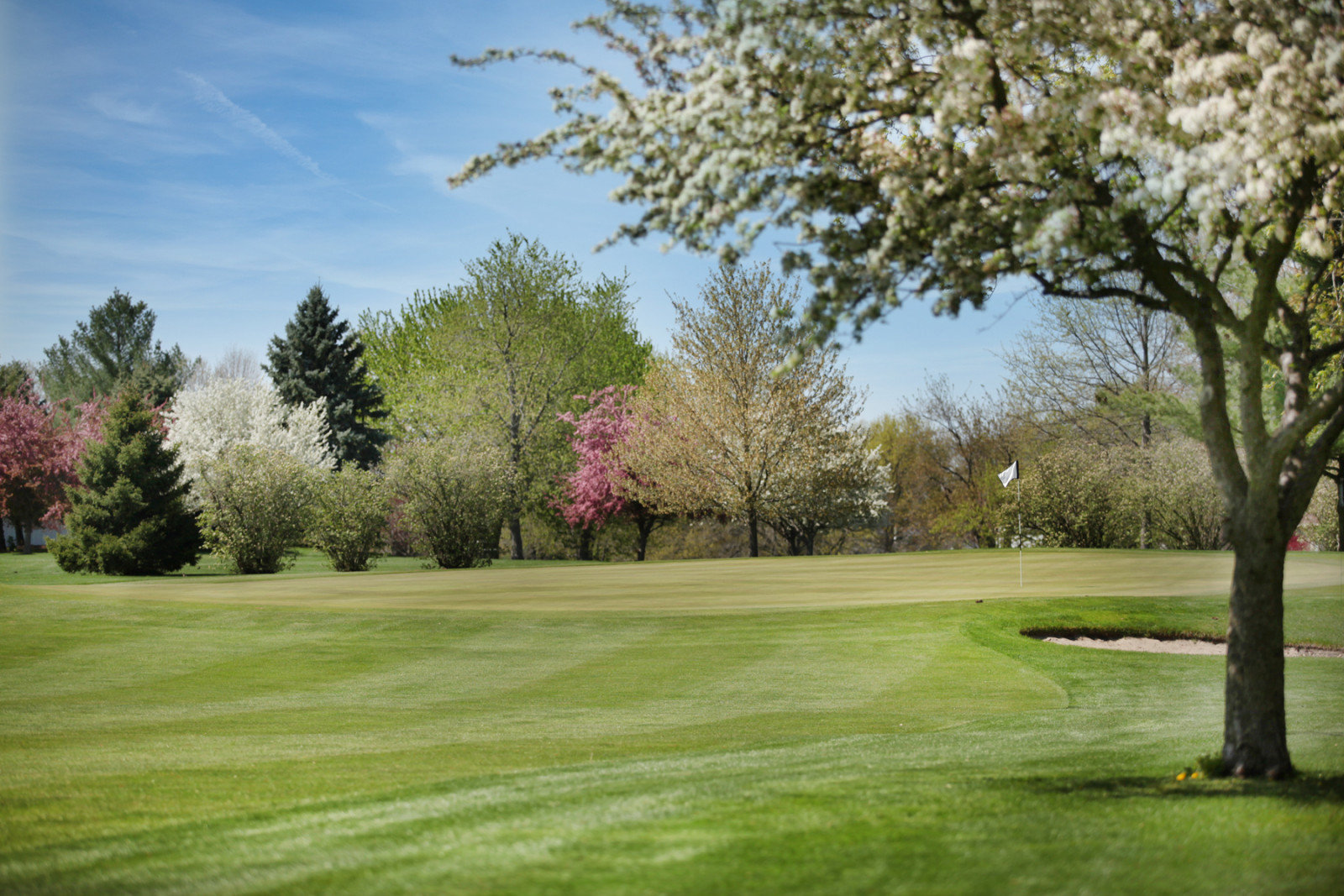 Mattoon golf and cc Spring
